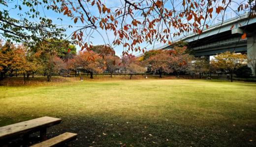 都市農業公園(東京都足立区)に行ってみました 子連れで遊べる公園レポート