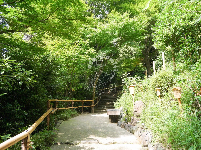 庭園/椿山荘