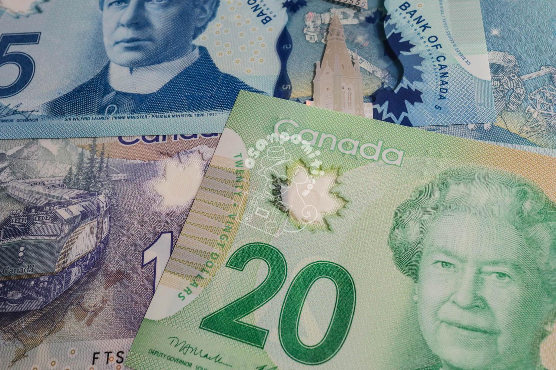 カナダ ドル 日本 円