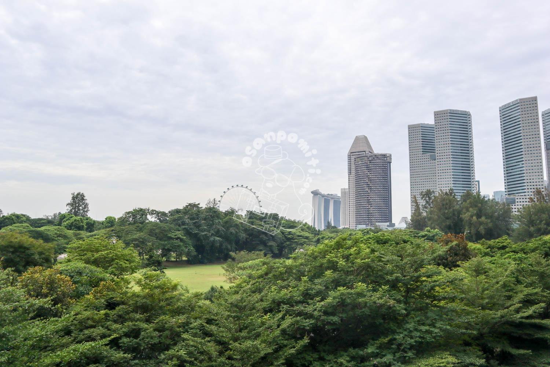 プール/パークロイヤルオンビーチロード シンガポール