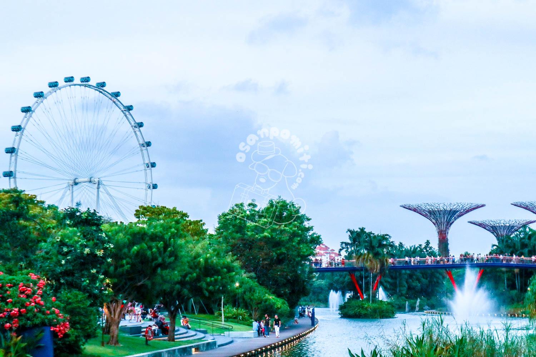 シンガポールフライヤ―/シンガポール