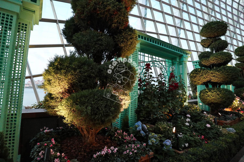 フラワードーム/ガーデンズバイザベイ