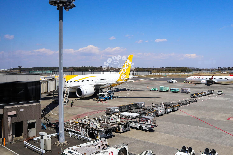 駐機場/成田空港